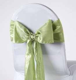 PARTY SHOP TAFFETA SASHES