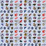 """Unique PAPIER EMBALLAGE (30"""" X 5') - NHL"""