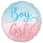 Anagram MYLAR 18PO- BOY OR GIRL