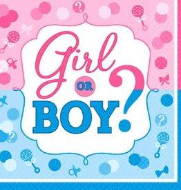 Amscan LN GIRL OR BOY?