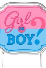 Amscan DÉCORATION POUR GÂTEAU - GIRL OR BOY?