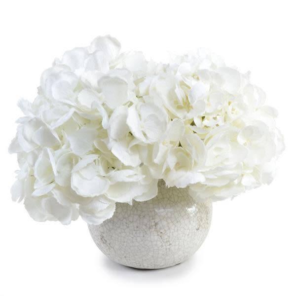 White Hydrangea in White Crackle Glazed Vase