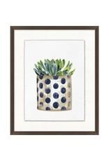 Decorated Succulent 7 - 17x21
