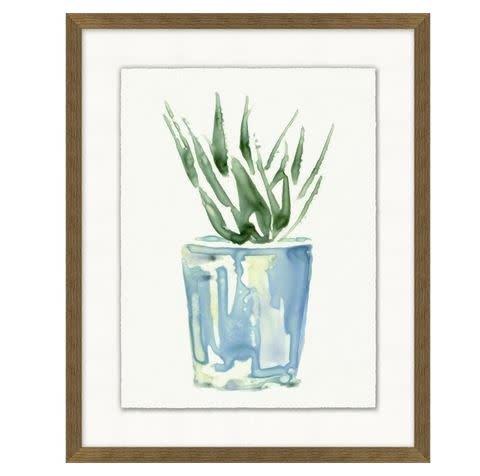 Potted Succulent 1 - 17x21