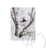 Burton Burton FT Leader Snowboard