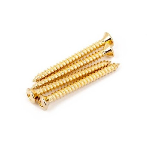 Neck Mounting Screws, Gold, (4)