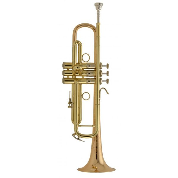 Bach Bach LR19043B Stradivarius Profess Bb Trumpet Lacquer w/ Custom Engraving & Case
