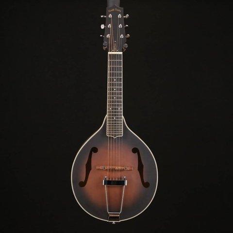 Gold Tone A-6 Mando-Guitar w/ Foam Case