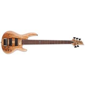 LTD ESP LTD B-205 Spalted Maple See Thru Black Satin 5-String Electric Bass Guitar