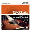 D'Addario EFT13 Flat Tops Phosphor Bronze Acoustic, Resophonic Guitar, 16-56