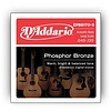 D'Addario EPBB170-5 Phosphor Bronze 5-String Acoustic Bass, Long Scale, 45-130