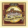 2012 Ernie Ball Earthwood 80/20 Bronze 12-String Medium