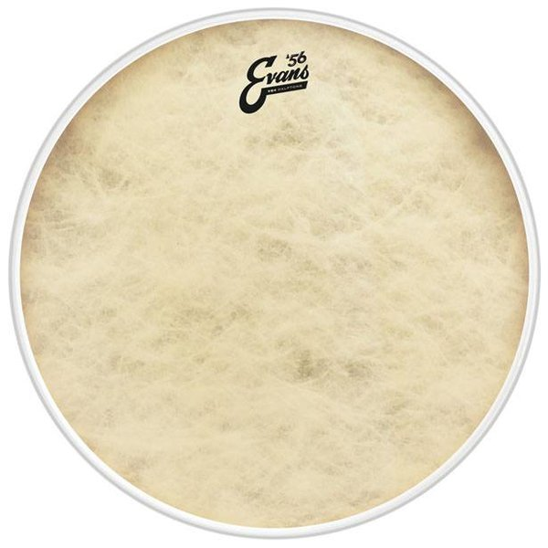 Evans Evans EQ4 Calftone Drum Head, 16 Inch