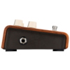 L.R. Baggs Align Series Acoustic Reverb Pedal
