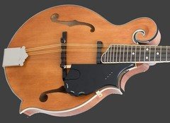 Mandolin Strings