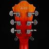 Ibanez AFV75VAL Artcore Vintage 6str, Vintage Amber Burst 014 6lbs