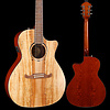 2019 Limited Edition FA-345CE Auditorium, Spalted Maple Top S/N IWA1922106 4lbs 8.6oz
