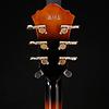 Ibanez AS93FMVLS Artcore Expressionist 6str, Violin Sunburst 339 7lbs 11.1oz