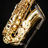 Hollywood Winds 120686 H702-L Alto Sax