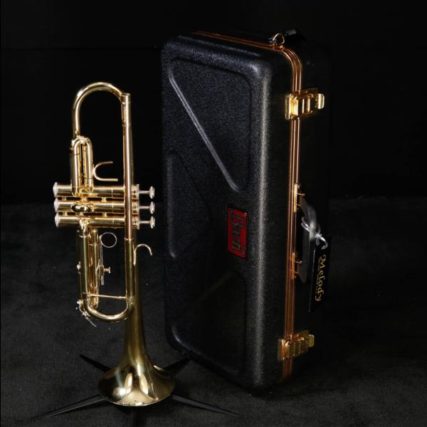 Bach Bach 509339 TR300H2 Student Bb Trumpet, Standard Finish