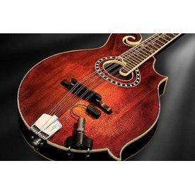 LR Baggs LR Baggs Radius-M Mandolin Pickup w/ External Jack Mount