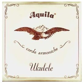 Aquila Aquila Concert All Nylguy Set