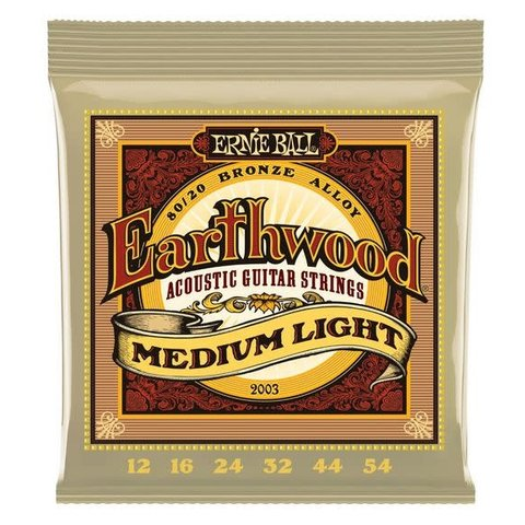 2003 Ernie Ball Earthwood Medium Light 12-54
