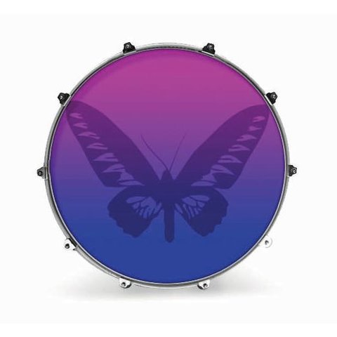"Evans 24"" Graphic Butterly 1"
