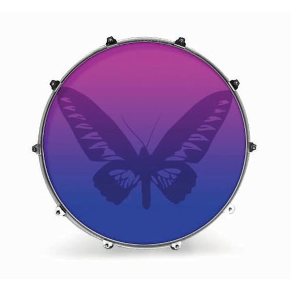"""Evans Evans 24"""" Graphic Butterly 1"""