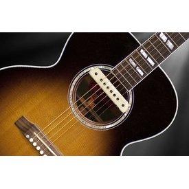 LR Baggs LR Baggs M1 Passive Acoustic Soundhole Pickup