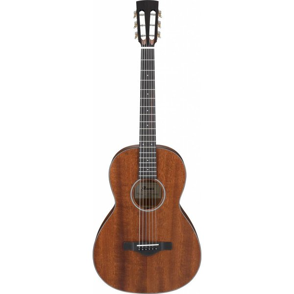 Ibanez Ibanez AVN9OPN Artwood Vintage Thermo Aged Parlor Acoustic Guitar Open Pore