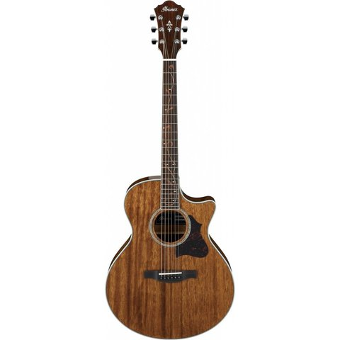 Ibanez AE245NT AE Acoustic Electric Guitar - Natural