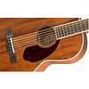 Fender PM-2 Parlor All Mahogany with Case, Natural