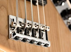5 String Bass Guitars