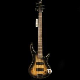 Ibanez Ibanez GSR205SMNGT Gio Soundgear 5-String Elec Bass Guitar Natural Gray Burst