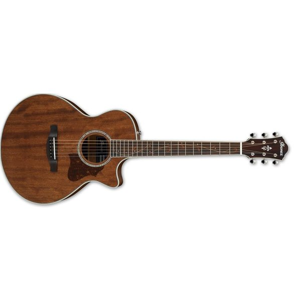 Ibanez Ibanez AE245JROPN AE Acoustic Electric Guitar - Natural