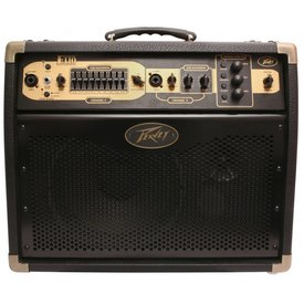 Peavey Peavey Ecoustic  E110 with Footcontroller