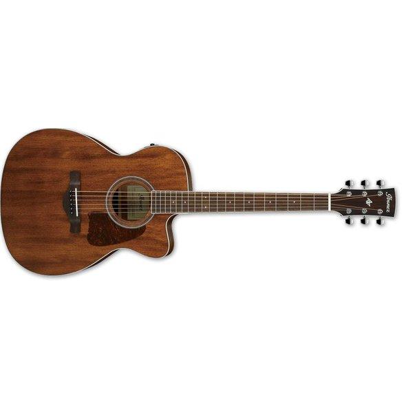 Ibanez Ibanez AC Artwood 6Str Acoustic/Electric Guitar - Open Pore Natural