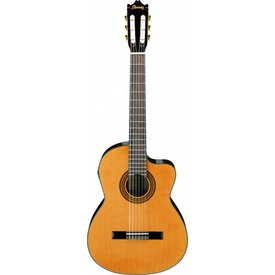 Ibanez Ibanez GA6CE CL Classical Acoustic Electric Cutaway Guitar