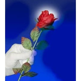 A Rose For You by The Essel Magic w
