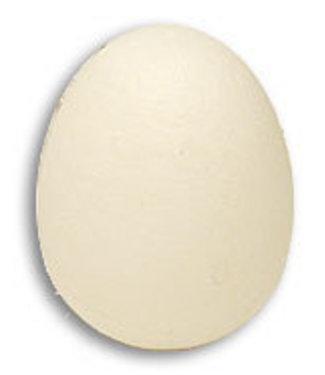 Foam Egg by Magic by Gosh