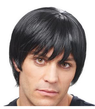 Costume Culture by Franco American Dude Black - Wig
