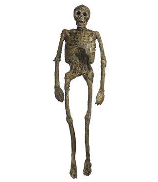 Forum Novelties Rotted Skeleton Full Body Prop by Forum Novelties