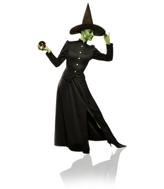 Classic Witch Adult Medium by Costume Culture By Franco LLC