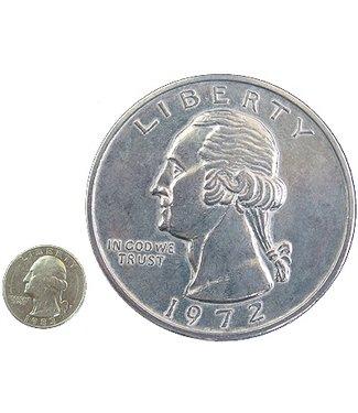 Jumbo Coin, Quarter - 3 inch (M10)
