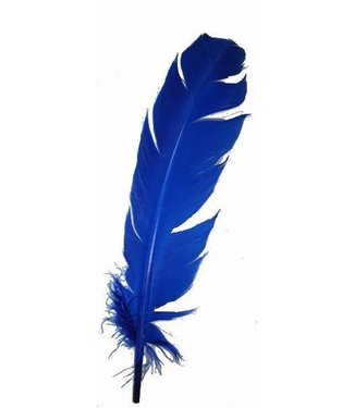 Indian Feather Blue