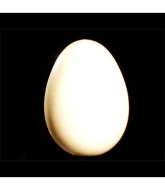 Wooden Egg - India M10