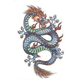 Johnson And Mayer Fantasy Dragon Temporary Tattoos by Johnson And Mayer
