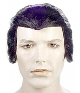 Morris Costumes and Lacey Fashions Dracula Black Wig