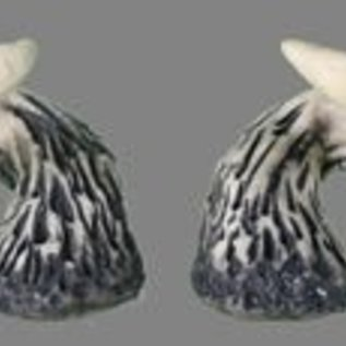 Pans House Of Horns Horns Aries - White (C2)